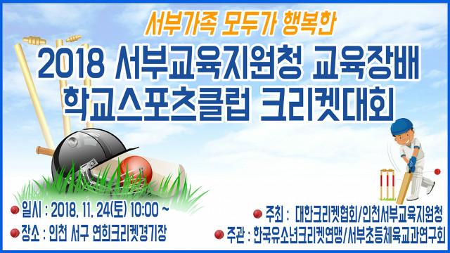 2018 유소년크리켓대회.jpg